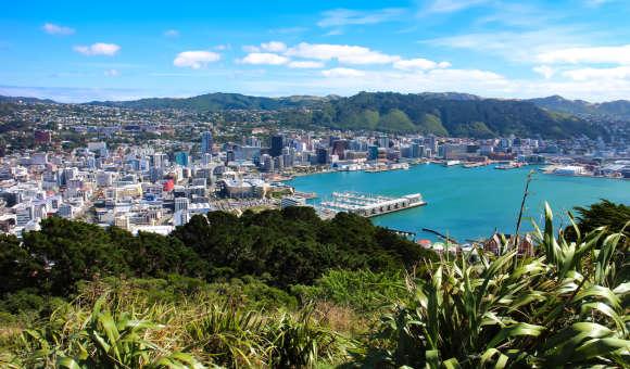 Schools in Wellington