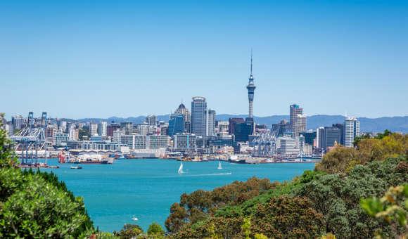 Schools in Auckland